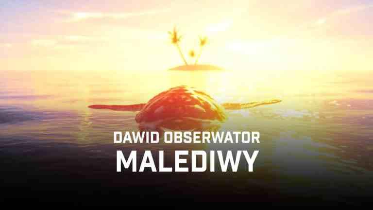 dawid obserwator malediwy